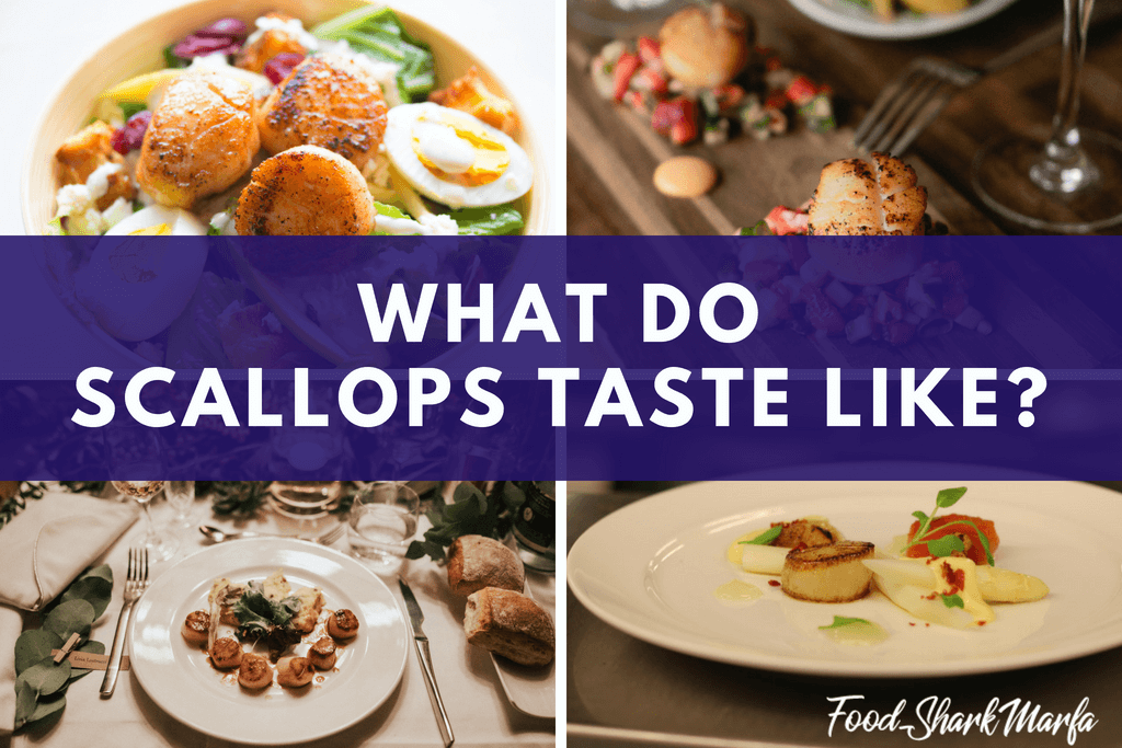 What Do Scallops Taste Like
