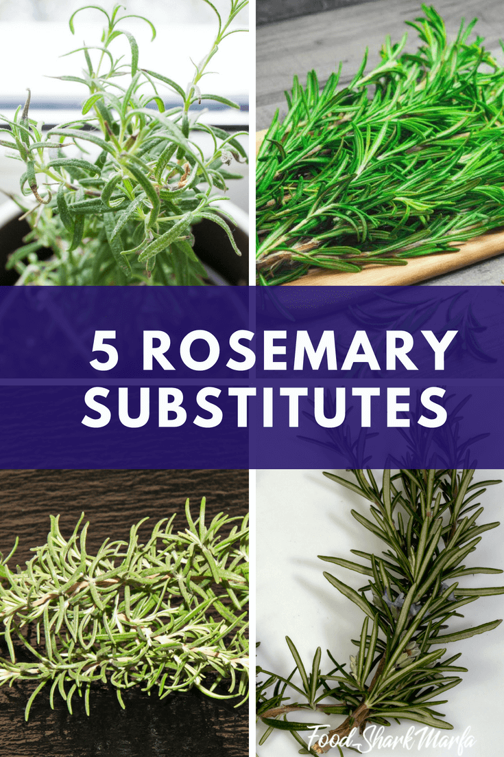 Rosemary Substitutes pin image