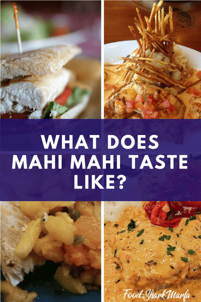 What Does Mahi Mahi Taste Like pin image