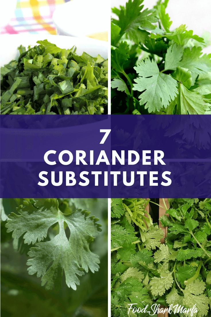 coriander substitutes pin image