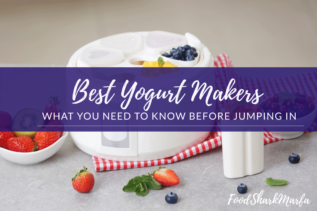 Best-Yogurt-Makers