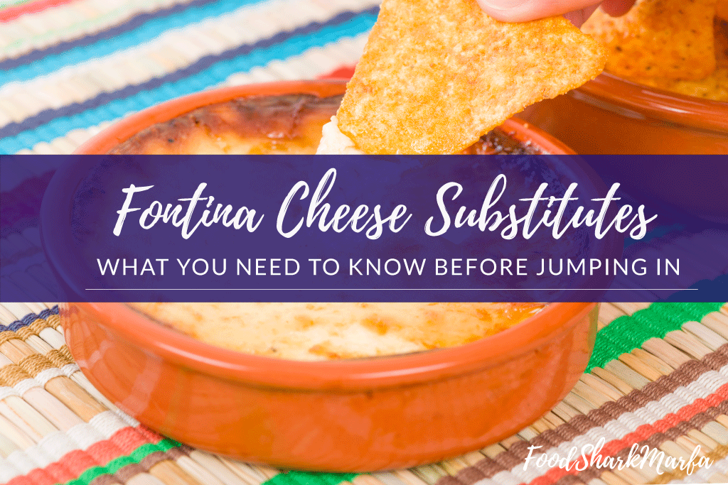 The 6 Best Fontina Cheese Substitutes for Your Dish | Food