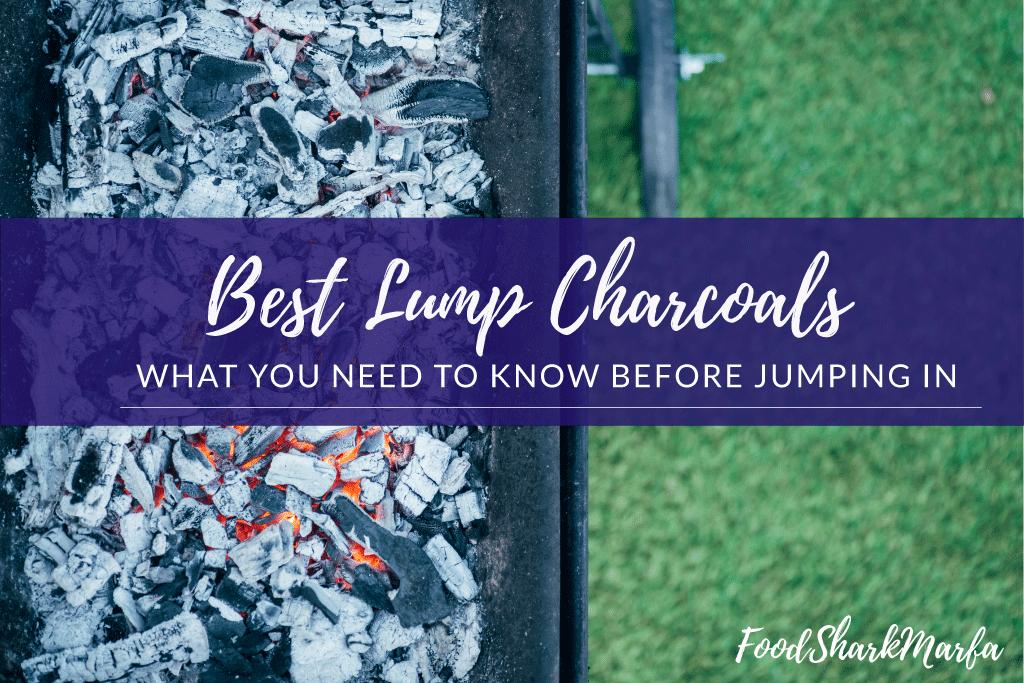 Best Lump Charcoals