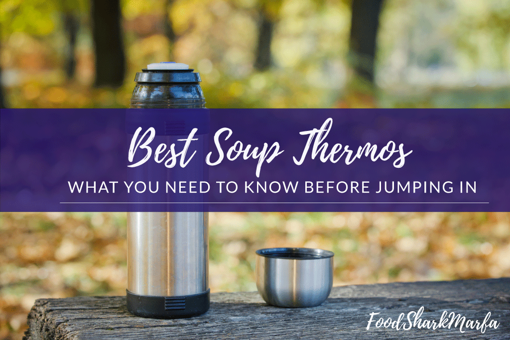 Best Soup Thermos