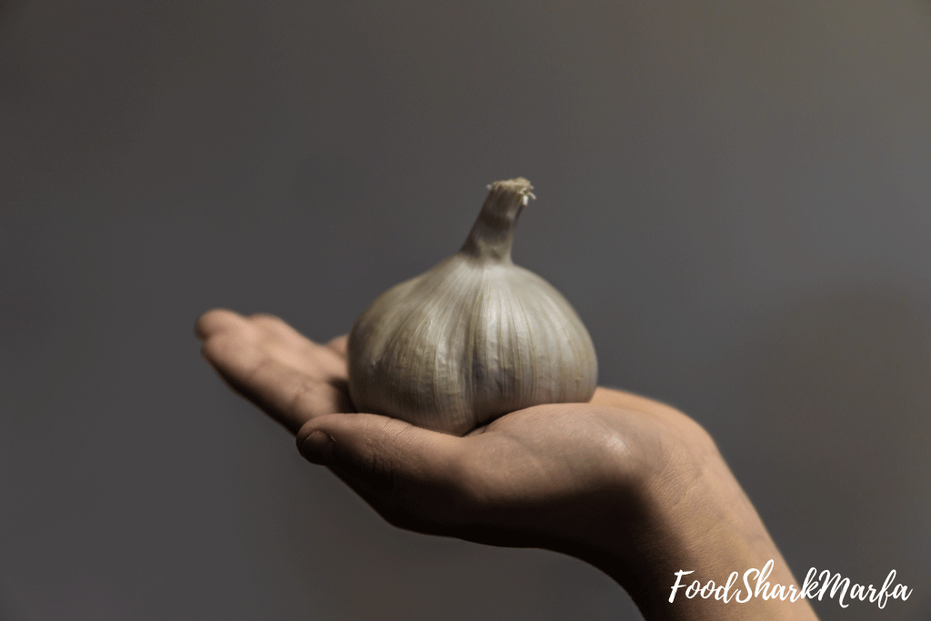 Garlic contains antioxidants