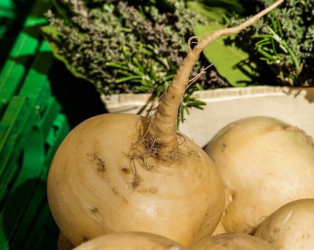 Cooking Ideas for Turnips