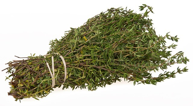 Preparing Fresh Thyme for Cooking