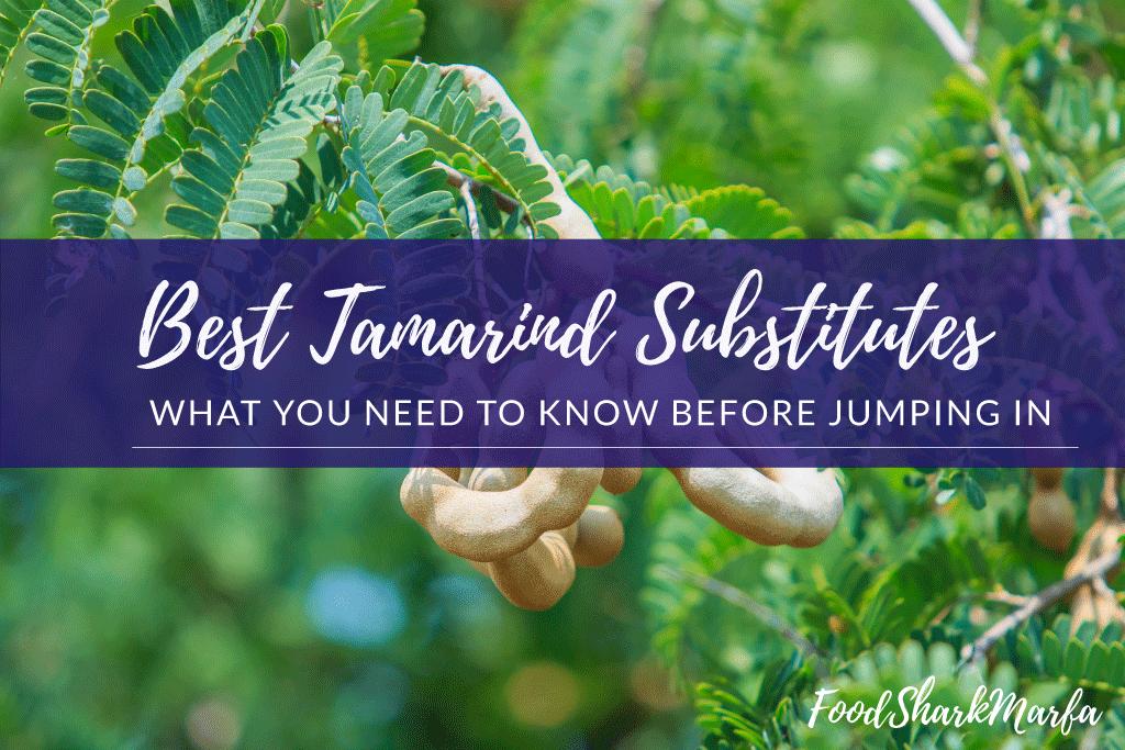 Best-Tamarind-Substitutes