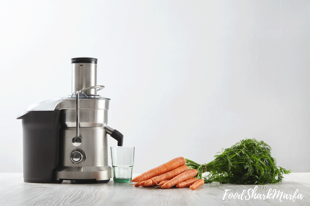 Things to Consider Before Buying Best Commercial Juicer