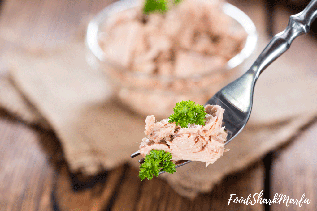 Taste-the-tuna-from-the-can